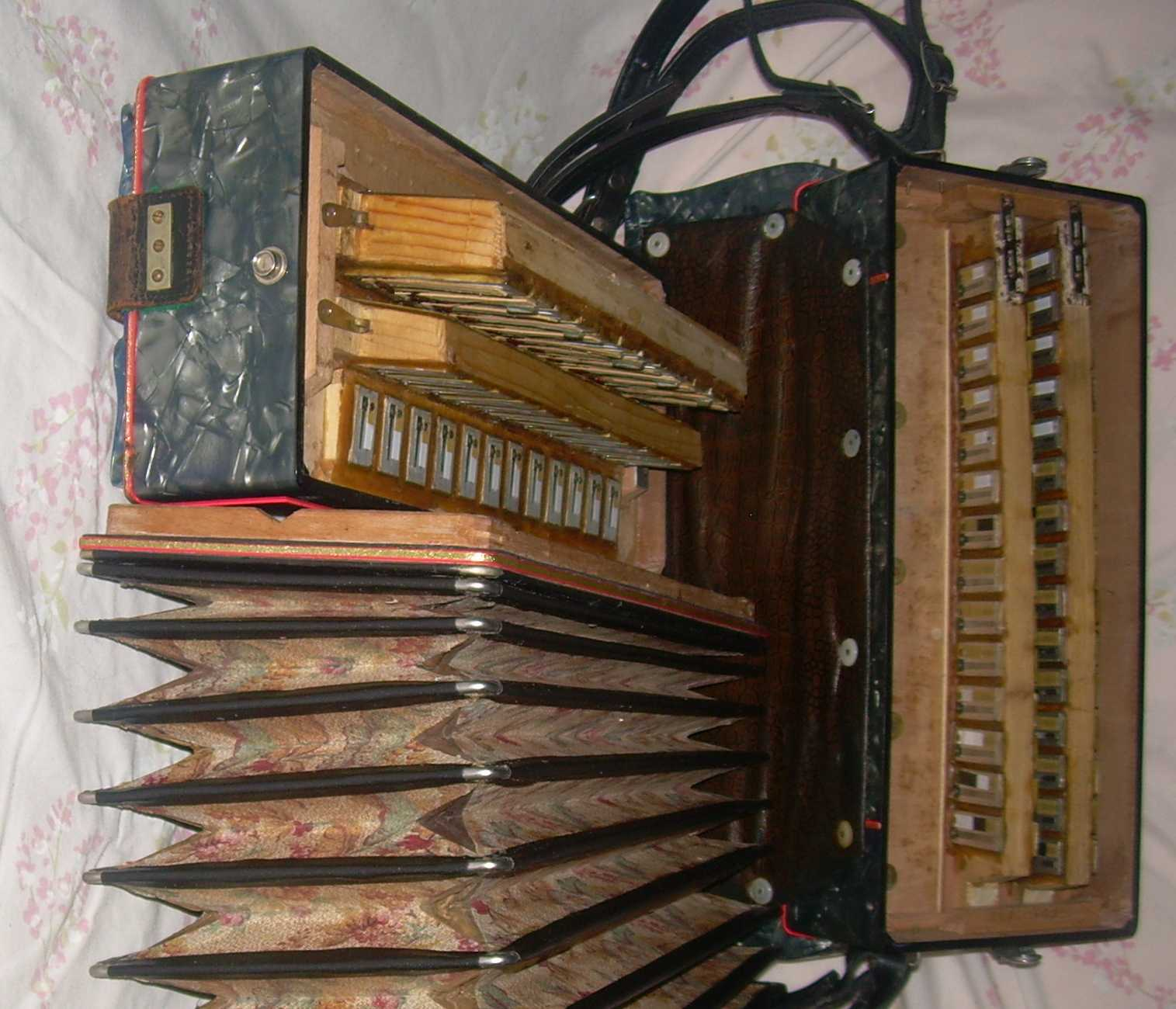 Inner workings of Michelangelo 36 bass accordion